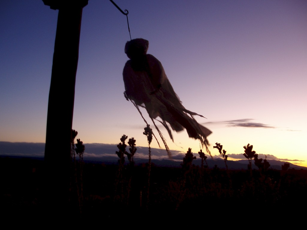 A ghoul flies by at sunset in Santa Fe